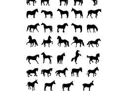 各种姿势的马剪影矢量素材