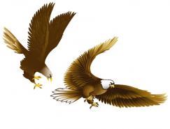 鹰矢量素材