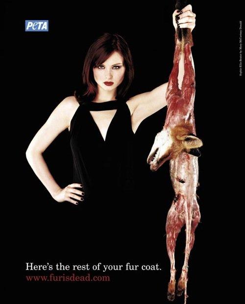 国际动物保护组织peta平面公益广告(2)