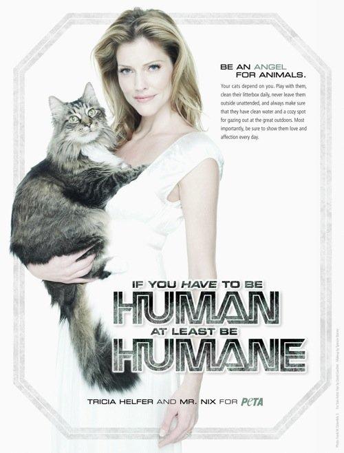 国际动物保护组织peta平面公益广告(5)