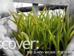 18个漂亮的绿色系网站欣赏