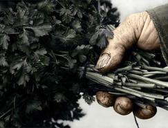 22张劳动节题材优秀摄影澳门金沙网址