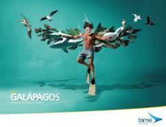 TameEcuador航空公司創意廣告