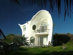加勒比天堂:海螺别墅