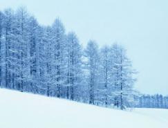 冰雪摄影技巧