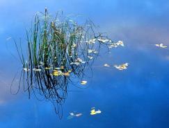 IanCameron漂亮的自然风光摄影