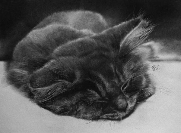 paul lung照片级的铅笔画作(3)