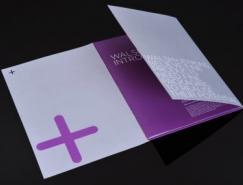 一组精美设计的宣传画册欣赏