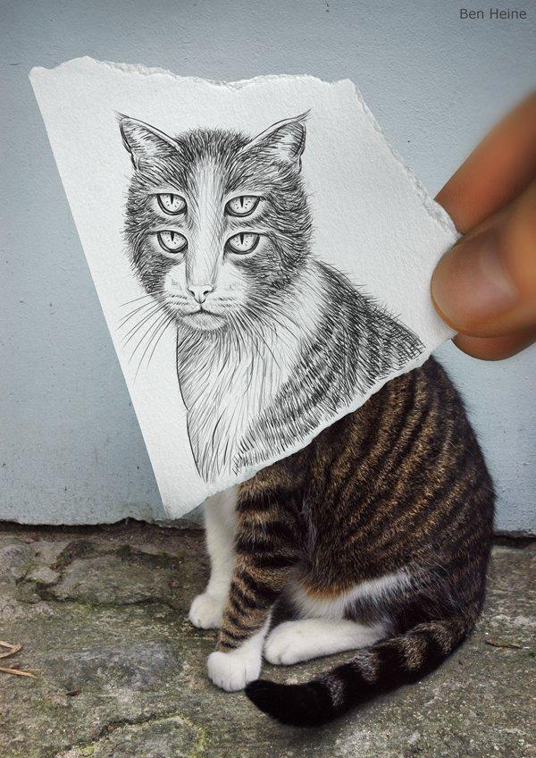 铅笔画图片可爱猫