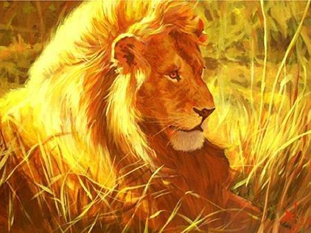 50张漂亮的动物cg作品欣赏(7)