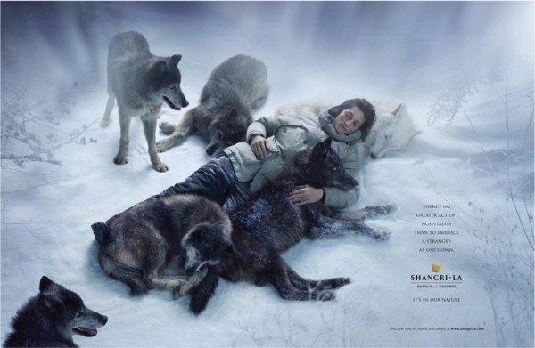 香格里拉酒店广告设计案例欣赏