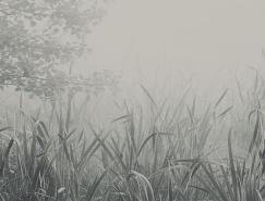 宁静无声:garmonique摄影作品