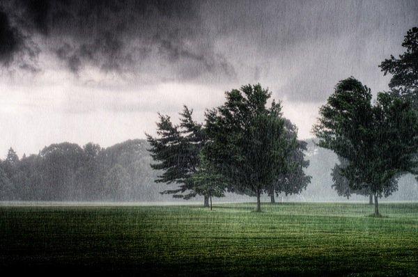 雨天手绘风景图