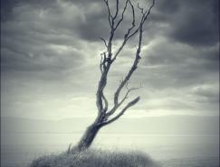 MaxAsh虚幻般的景观摄影