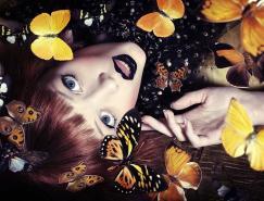 时装摄影欣赏:蝴蝶效应