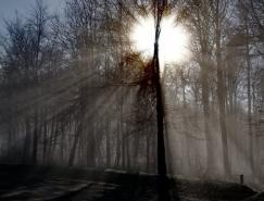 16张美丽的阳光光束照片