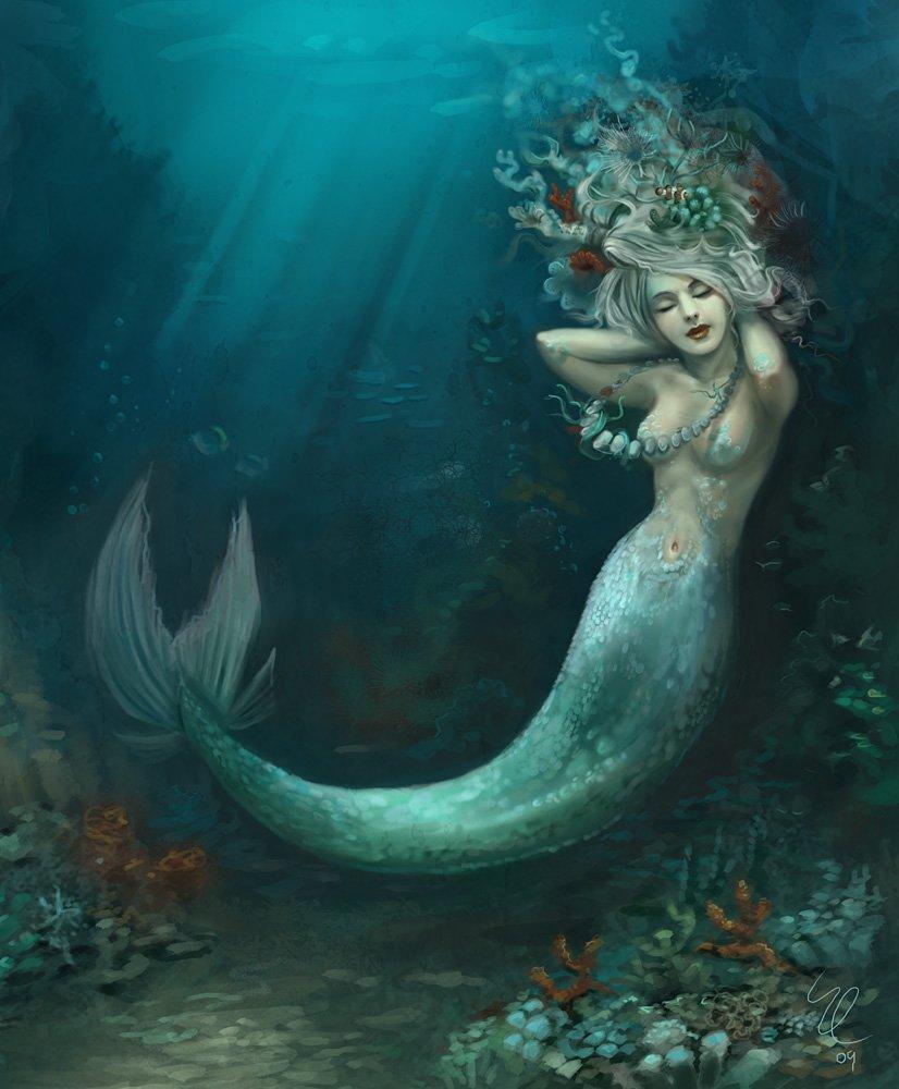 壁纸 海底 海底世界 海洋馆 水族馆 826_1000
