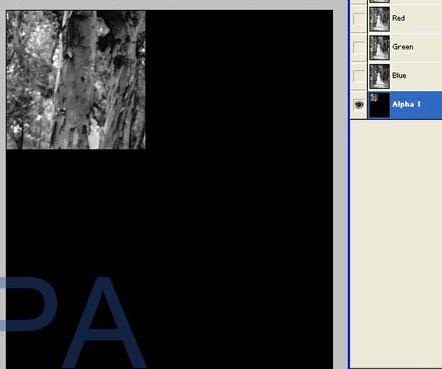 photoshop给树林照片添加逼真的透视光线效果