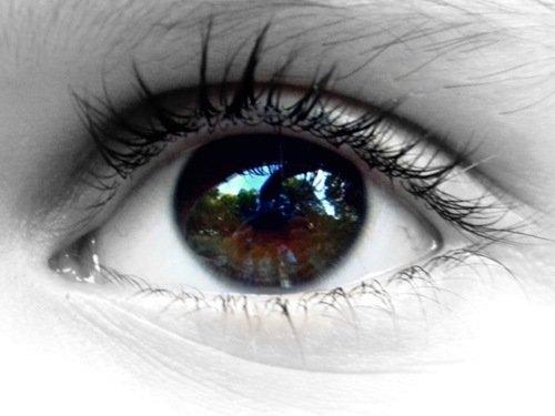 微距镜头下的眼睛特写(3)