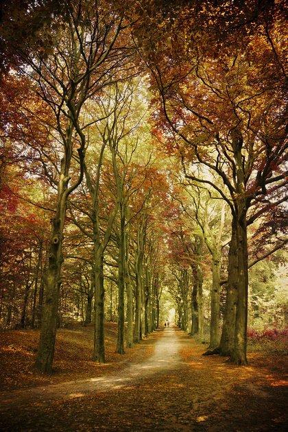 荷兰摄影师LarsVanDeGoor美丽迷人的风景摄影作品