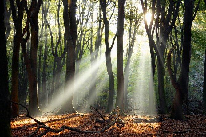 荷兰摄影师larsvandegoor美丽迷人的风景摄影作品(5)