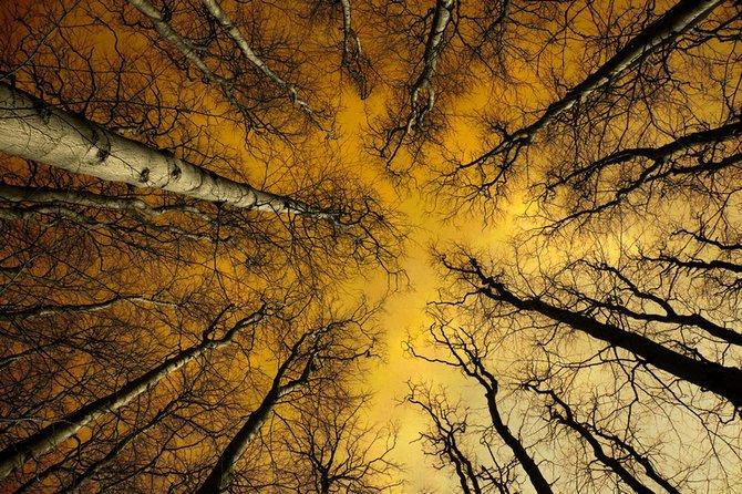 荷兰摄影师larsvandegoor美丽迷人的风景摄影作品(7)
