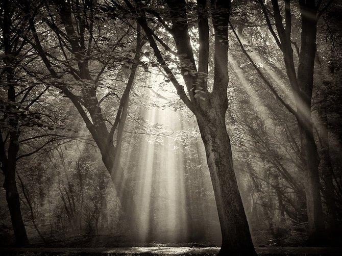 荷兰摄影师larsvandegoor美丽迷人的风景摄影作品(11)
