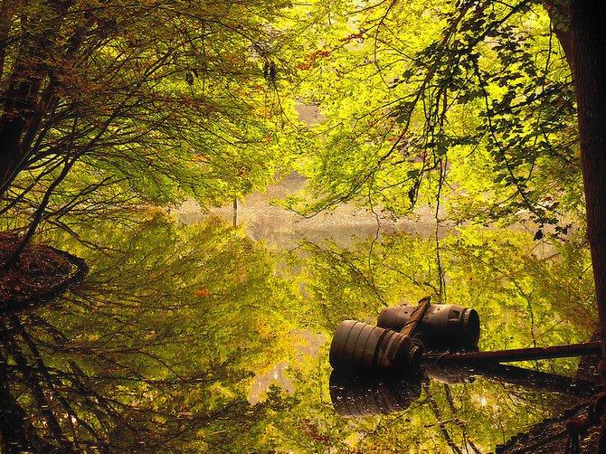 荷兰摄影师larsvandegoor美丽迷人的风景摄影作品(13)