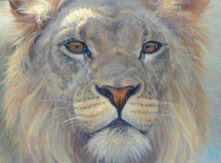 j. cleland-hura动物绘画作品(2)