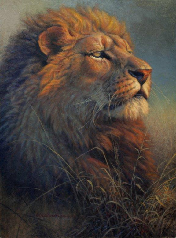大跹.d:j�9�.�fj9.��g���_d. j. cleland-hura动物绘画作品(2)