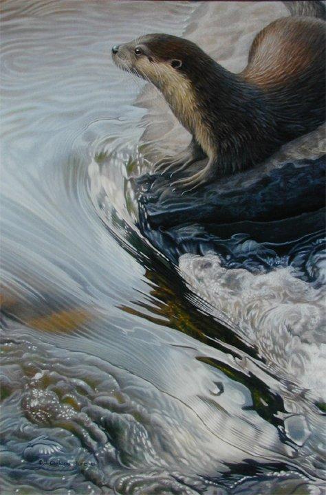 j. cleland-hura动物绘画作品(4)