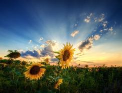 匈牙利ZsoltZsigmond美丽风光摄影作品