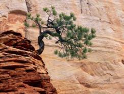 WilliamNeill美丽的自然风光摄影