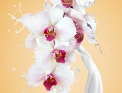 Photoshop合成动感的牛奶花朵