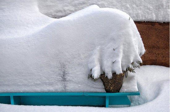 摄影欣赏:寒冷的冬天