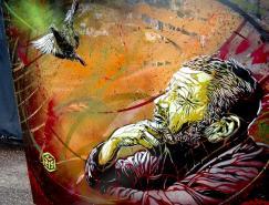 C215:街头涂鸦艺术家的故事
