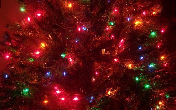 圣誕節圖片16