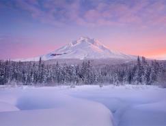 银装素裹的如画景色:冬季精