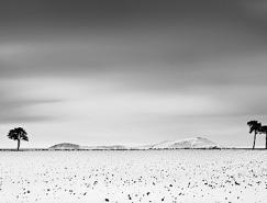仙境般的黑白雪景照片