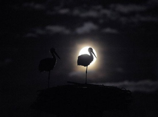 创意夜景摄影欣赏