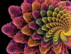 分形艺术欣赏:美丽的花