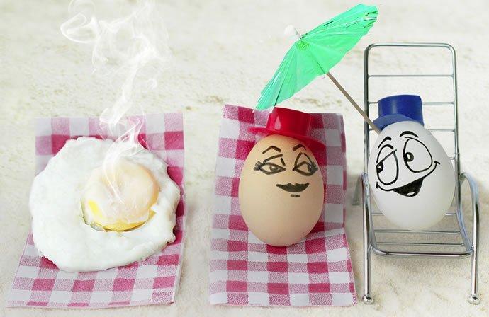 VanessaDualib:蛋、食物制作的创意摄影作品