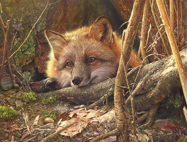 逼真的野生动物绘画作品