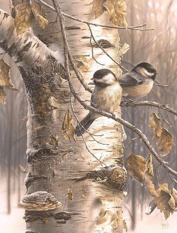 jr.逼真的野生动物绘画作品(2)