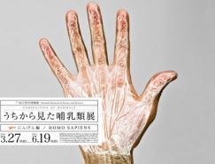 日本设计师wataruyoshida:哺乳动物展海报设计