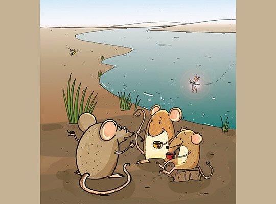 可爱的动物卡通插画作品(2)