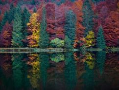 风光摄影:美丽的秋天