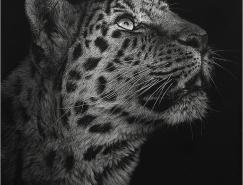 CristinaPenescu照片般逼真的动物版画艺术