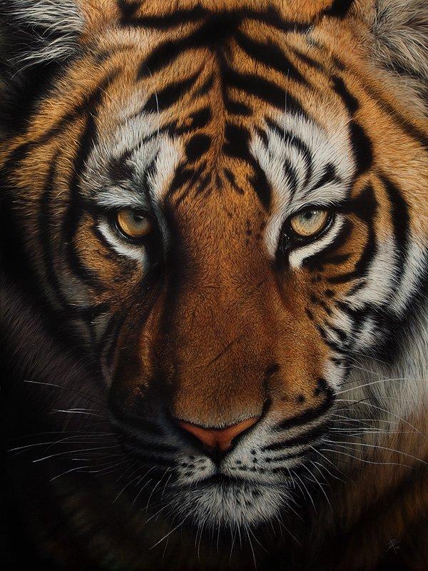 真的动物版画艺术