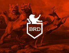 品牌設計欣賞:BR-Design